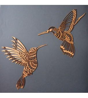 Couple de colibris